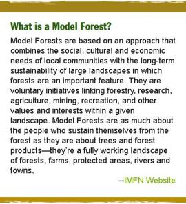 What is a Model Forest? Model Forests are based on an approach that combines the social, cultural and economic needs of local communities with the long-term sustainability of large landscapes in which forests are an important feature. They are voluntary initiatives linking forestry, research, agriculture, mining, recreation, and other values and interests within a given landscape. Model Forests are as much about the people who sustain themselves from the forest as they are about trees and forest products—they're a fully working landscape of forests, farms, protected areas, rivers and towns.