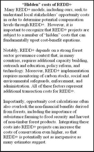 """Hidden"" costs of REDD+"